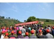 廣西省昭平縣召開茶葉生產機械化示范現場會