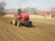 上市拍卖:农村土地流转的新思路