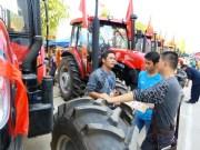 第七屆中國—東盟(百色)現代農業展示交易會開幕