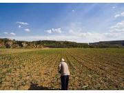 不得借流转之名 侵夺农民土地