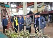 湛江农垦局局长到华海与丰收公司调研榨季生产工作
