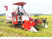 雷沃谷神RG40性能优良 快速收割倒伏水稻