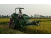 """奇瑞重工推出PL20水稻机 成为小地块水田里""""收割利器"""""""