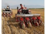 新疆焉耆重点示范推广小麦玉米免耕机械播种施肥技术