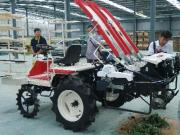 杭州派员赴上海考察蔬菜移栽机械