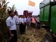 山东省新泰市召开玉米机械收获现场会