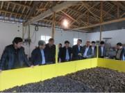 安徽省池州市召开山区特色农业机械化观摩演示会