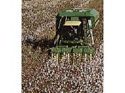 永恒的可靠性承诺之五:突破传统的约翰迪尔摘棉机