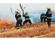 河南十天内麦田起火3000多起 近九成是因烟头引起