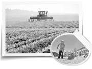 黑土地上的农业综合配套改革