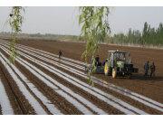 先買流量后播種 新疆兵團精準農業減少土地浪費