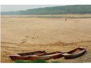山东潍坊大旱 三大水库干涸 180万亩农田受旱
