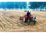 安徽省夏種基本結束 已完成面積5961萬畝