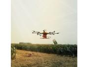 安徽省五河县举办玉米机收暨秸秆利用现场会