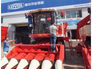 八月雷沃谷神玉米机持续热销