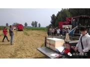 热销的春雨玉米机之南乐玉米机演示会打响演示第一枪