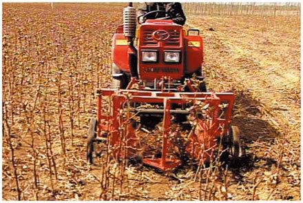 農哈哈棉花秸稈收割機