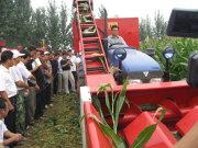 農哈哈4YB-3背負式玉米收割機