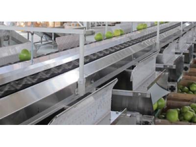 江西绿萌SECH-10电脑果蔬重量分选机