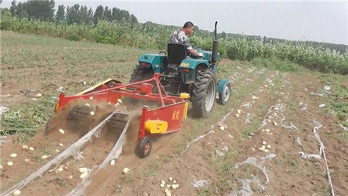 青岛璞盛4UX-130马铃薯收获机