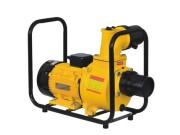 晨泰DSU-100B水泵