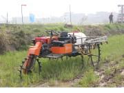 众和3WPS-300水田多功能车