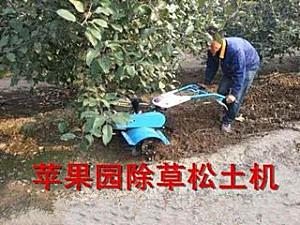 河南勇丰YF-170苹果园除草机/松土机