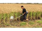 YF-170水稻收割机