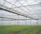 湖南志恒GLP連棟塑料溫室