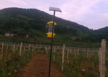 禾记太阳能kh-6-s1灭虫装置