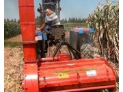 ZY-JGSG100玉米秸秆收割机