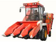 4YZP-3自走式玉米收获机