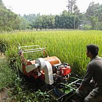 川江華4LZ-0.6微型聯合收割機