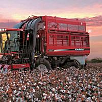 凯斯Cotton Express 620采棉机