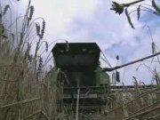 道依茨法爾4045 HTS聯合收割機