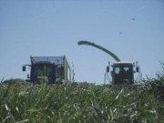 各种大型农机作业视频