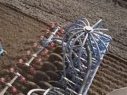 雷垦播种机作业视频