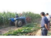 农哈哈玉米秸秆收割机作业视频