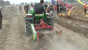 璞盛4U-85(加長版)馬鈴薯收獲機甘肅收獲現場視頻