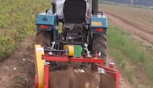璞盛4UX-85A馬鈴薯收獲機收獲現場視頻