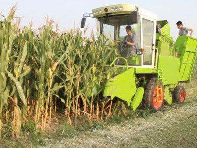 山东润源4yz-3c玉米联合收割机视频