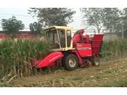 中农博远4YZ-3H自走式玉米联合收获机作业视频