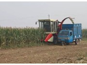 中农博远4YZ-4AH玉米收割机