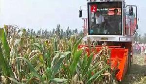山東巨明玉米收產品宣傳