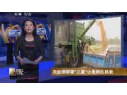 """中联农业部部署""""三夏""""小麦跨区机收作业视频"""