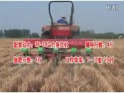 豪丰2BMZJ-4型玉米免耕精少量播种机作业视频