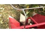 河北冀新牌玉米收割机作业视频