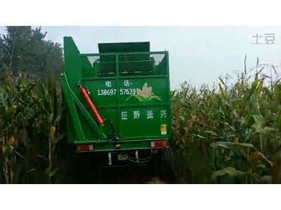 時風玉米收割機2作業視頻