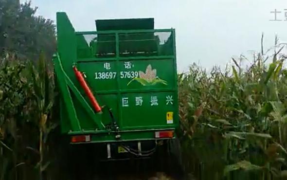 时风玉米收割机2作业视频