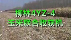 柳林4YZ-4玉米联合收获机作业视频